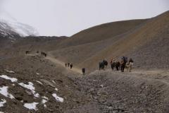 Am Pass konzentriert sich die Trekkingschar und es ist ein wenig eine Völkerwanderung