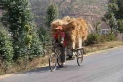 Getreidetransport