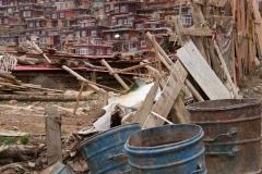 Slum-ähnliche Zustände.