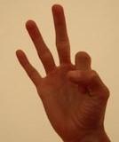 3 - Drei