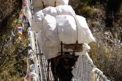 Träger - Everestgebiet