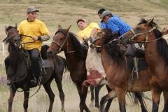 """Voller Einsatz ist gefragt beim kirgisischen """"Ziegen-Rugby""""."""