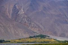 Grüne Oase in Afghanistan