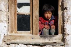 Neugieriger Beobachter - Zanskar