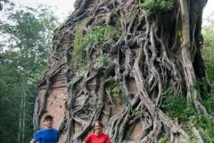 Eingewachsener Tempel bei Sambor