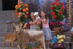 Soooo fern scheint die Schweiz gar nicht zu sein... Fotohintergrund beim Basar in Bishkek