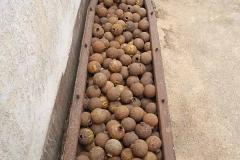 Eine solche 500 Pfund Bombe enthält rund 600 kleine Clusterbomben.