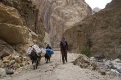 Mit Eseln unterwegs